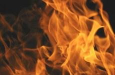 Cà Mau: Điều tra vụ vợ chồng chủ cơ sở thức ăn thủy sản chết cháy