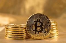 Đồng Bitcoin tăng lên mức cao nhất trong hơn 4 tháng qua