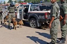 Mozambique tiêu diệt thủ lĩnh Hội đồng quân sự Renamo tự xưng