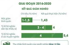 Tháng cao điểm 'Vì người nghèo': Những kết quả giảm nghèo bền vững
