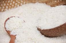 Thu hồi một lô gạo thơm giống ST25 tại Bỉ do có dư lượng hóa chất