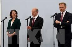 Đức: Đảng Xanh nhất trí đàm phán thành lập liên minh 'đèn giao thông'