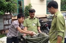 Tạo khoang bí mật, tài xế đưa 400kg chim đông lạnh lậu về Thủ đô