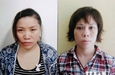 Vụ mua bán trẻ tại chùa Bồ Đề: Đề nghị truy tố 2 bị can