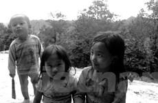 Những đứa trẻ 'đánh rơi' ngày khai giảng trên nương cao