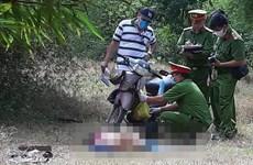 Ninh Thuận: Phát hiện thi thể một phụ nữ lõa thể trong rừng