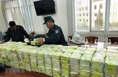 'Quyết tâm không để Việt Nam thành điểm trung chuyển ma túy quốc tế'