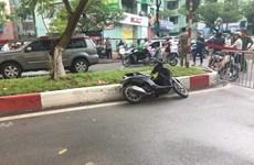 Hà Nội: Cây đổ trong đêm mưa khiến một người tử vong