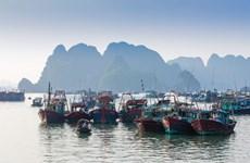 [Photo] Bình yên chợ cá sau núi Bài Thơ mỗi sớm bình minh