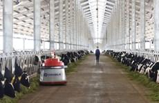 Vinamilk khánh thành trang trại bò sữa công nghệ cao tại Thanh Hóa