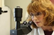 Thành tựu nghiên cứu dưỡng chất HMO bắt đầu từ tình yêu của người mẹ