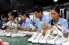 Thông số kiểu dáng giầy phù hợp với bàn chân người Việt Nam