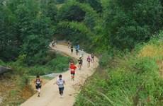 Giải Việt dã toàn quốc chinh phục đỉnh cao núi Bà Rá