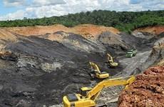 Indonesia: Nhiều công nhân khai khoáng nguy cơ mất việc