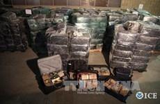 Italy và Mỹ phối hợp phá vỡ đường dây buôn ma túy lớn