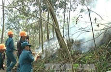 Rừng Hoàng Liên ở mức báo cháy cực kỳ nguy hiểm