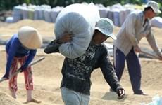 Khu vực ĐBSCL bảo đảm an ninh lương thực cho cả nước
