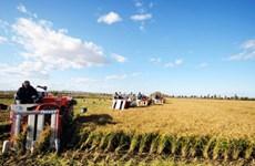 Nông nghiệp Trung Quốc tăng trưởng ổn định trong 10 năm tới