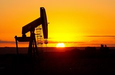 Nguồn cung tăng đẩy giá dầu tại thị trường Mỹ đi xuống