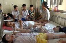 Học sinh Nam Định ngộ độc: Sữa Cô Gái Hà Lan âm tính