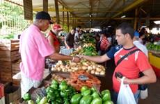 Cuba tìm kiếm các giải pháp giảm nhập khẩu lương thực