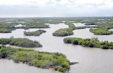 Phê duyệt danh mục dự án 18 triệu USD bảo tồn khu đất ngập nước