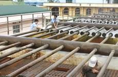 Nước nhiễm Asen: Hà Nội đã được cấp nước sạch sinh hoạt