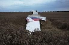 Mốc thời gian quan trọng của chiếc máy bay bị rơi MH17