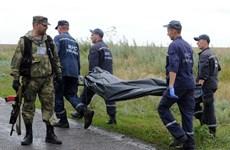Ukraine cáo buộc quân ly khai hủy bằng chứng vụ máy bay rơi