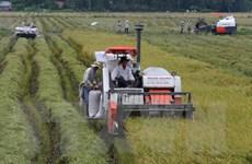 Ban Chỉ đạo Tây Nam Bộ cần đột phá trong sản xuất kinh doanh