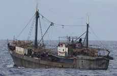 Cứu bốn thuyền viên Triều Tiên sau hai tuần lênh đênh trên biển