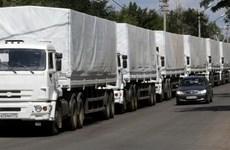 Đoàn xe nhân đạo Nga bắt đầu đi vào lãnh thổ Ukraine