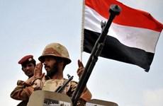 Yemen: Giao tranh giữa các bộ lạc và phiến quân, 12 người chết