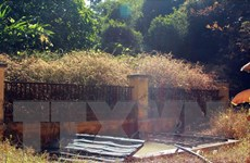 Hà Giang yêu cầu nhanh chóng xử lý rò rỉ khí clo ra môi trường