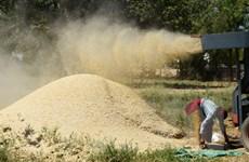 """""""Cơn sốt"""" mua đất nông nghiệp nước ngoài của các quốc gia Arab"""