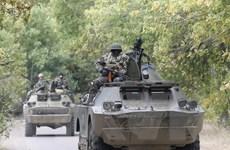 Phản ứng tích cực về trao quy chế đặc biệt cho Donetsk, Lugansk
