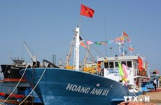 Ngư dân Khánh Hòa vay vốn phát triển tổ hợp tàu cá composite
