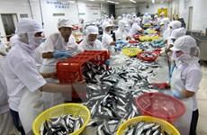 Kinh tế Việt Nam cần thay đổi phù hợp với yêu cầu phát triển mới