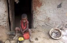 [Infographics] Chỉ số mức đói nghèo trên toàn cầu năm 2014