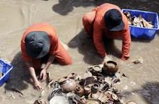 Truy cứu trách nhiệm hình sự với người mua bán cổ vật từ tàu đắm