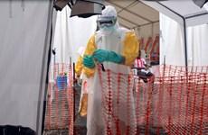 Mỹ khuyến khích nhân viên y tế đến Tây Phi dập dịch Ebola