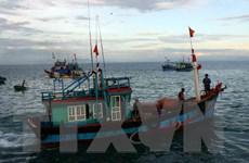Tàu cá Nghệ An với 10 ngư dân va vào đá ngầm, chìm xuống biển