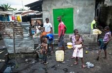 Số trường hợp nhiễm mới virus Ebola ở Liberia giảm mạnh