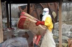 IMF bị chỉ trích gián tiếp góp phần vào sự lây lan của Ebola