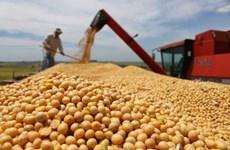 Một bang của Mỹ xuất khẩu hàng triệu USD nông phẩm sang Cuba