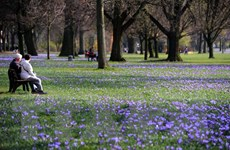 Nước Anh trải qua tháng Một nắng ấm nhất trong hơn 10 năm qua