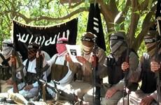 Australia trừng phạt nhóm phiến quân đóng căn cứ ở Ai Cập
