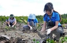 Lập quy hoạch bảo vệ môi trường ở cấp quốc gia và tỉnh