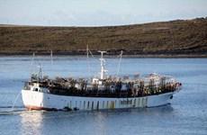 Tàu Đài Loan chở 2 thủy thủ Việt Nam mất tích trên Đại Tây Dương