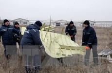 Hà Lan bác tin máy bay MH17 bị tên lửa Nga bắn hạ ở Ukraine